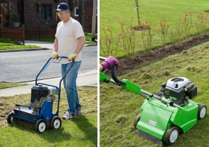 difference between power raking and dethatching