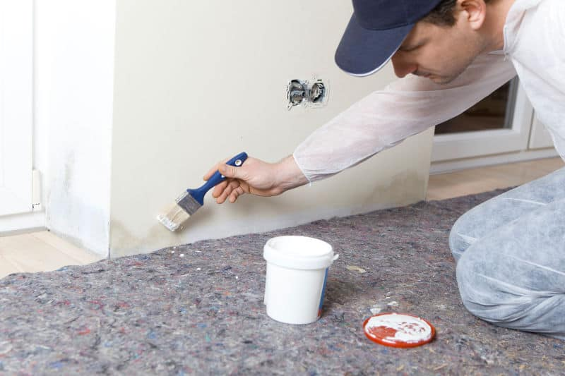 How Do Anti Mold Paints Work